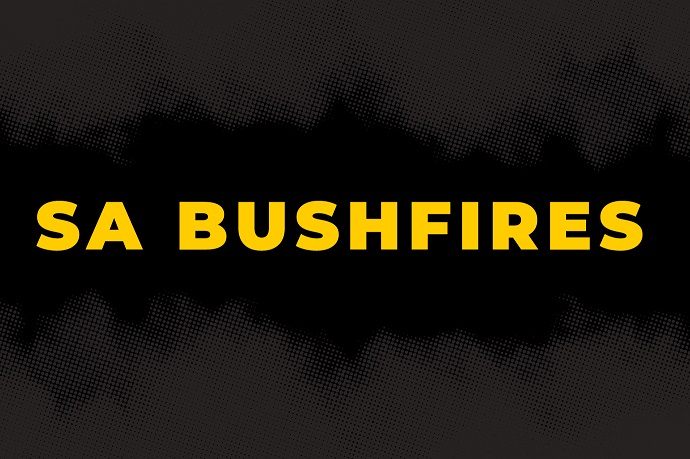 Bushfires support